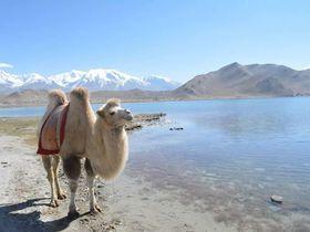 中国の西の果て!ウイグル自治区 シルクロードと絶景のイスラム都市カシュガル
