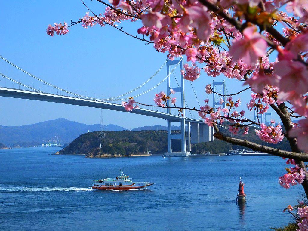 春色の風景と花の香りに包まれて~しまなみ海道・春の花めぐり