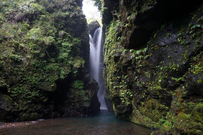 ゴッド降臨!辿り着けない滝は極上のパワースポット ~轟九十九滝(徳島県海陽町)