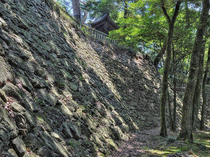 関東七名城の一つ・佐野「唐沢山城」本格的な中世山城を見に行こう