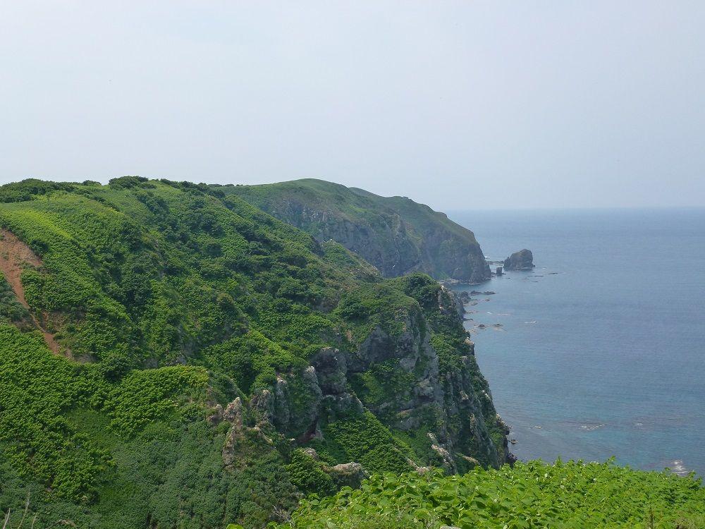 海鳥の楽園に広がる大自然を体感!北海道「天売島」を歩こう