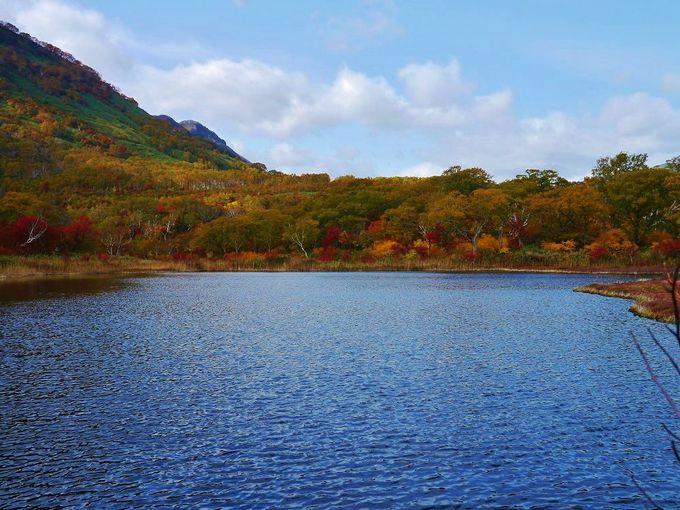 絶景!紅葉美しい鏡沼!!北海道ニセコアンヌプリの秋登山