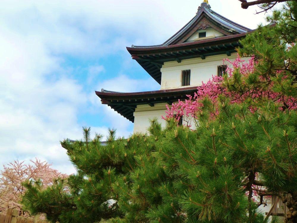 花と歴史を訪ねて…北の城下町北海道「松前町」を歩いて巡る