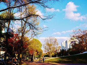 美しいのは紅葉だけじゃない!秋の札幌市「大通公園」散歩|北海道|Travel.jp[たびねす]