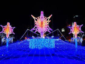煌めく冬の大通公園「さっぽろホワイトイルミネーション」|北海道|Travel.jp[たびねす]