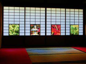 真っ赤な特等席!京都の紅葉は窓越し・額縁がオススメ 京都府 Travel.jp[たびねす]