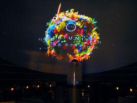 羽田空港に宇宙空間?「プラネタリウム スターリー カフェ」の美絶景がすごい!|東京都|トラベルjp<たびねす>