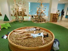 大人も子供も楽しめる!静岡「ベルナール・ビュフェ美術館」