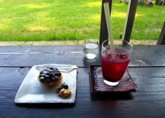 「びっき山」は丸ごと「空cafe」!五感で味わう福島の本当の魅力!