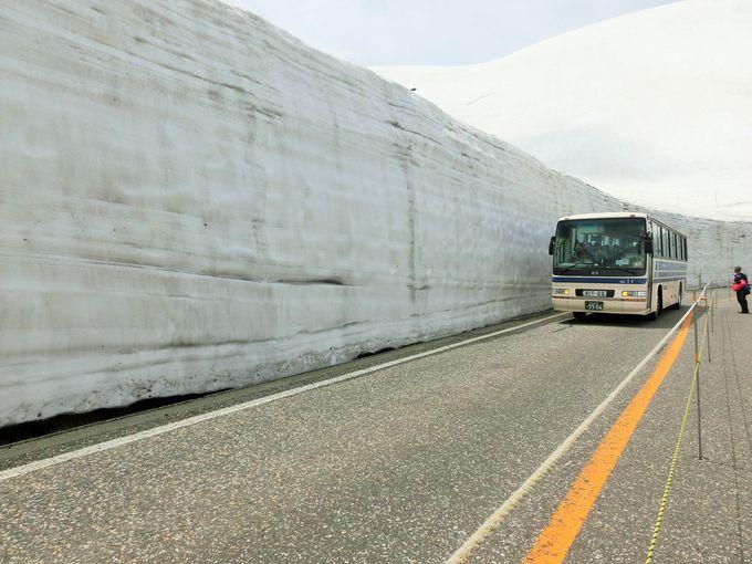 雪の大谷ウォークも体験!立山黒部アルペンルートを通り抜けよう!