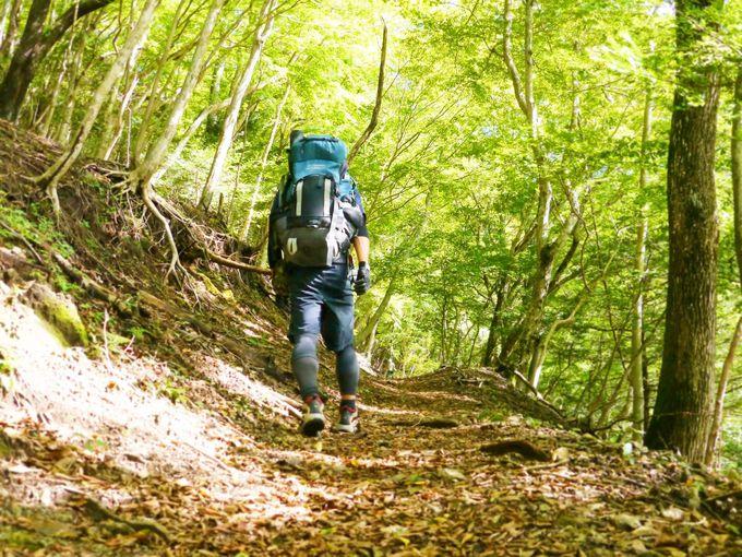 関東の人気縦走コース!丹沢主脈主稜縦走を安全に楽しむ方法