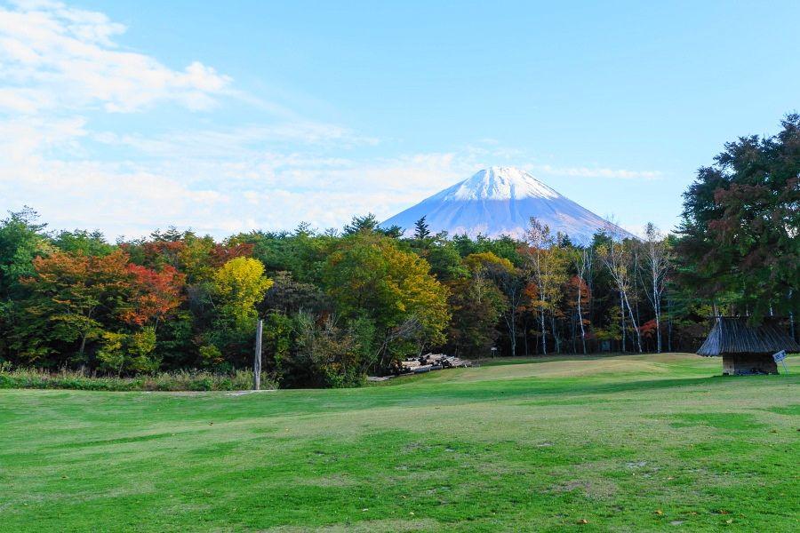 富士山麓の広大な原生林・青木ヶ原樹海(山梨)で森林浴と紅葉を楽しもう!