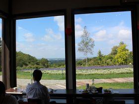 絶景と新鮮な食材!十勝ヒルズファームレストラン「ヴィーズ」で超贅沢ランチコース|北海道|[たびねす] by Travel.jp
