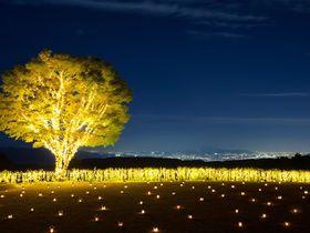 湖のオーベルジュ「星野リゾート ロテルド比叡」冬は限定中庭キャンドルナイト|京都府|Travel.jp[たびねす]
