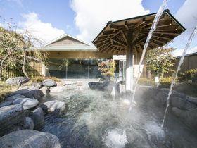 ダイナミックな温泉、眼前には2つの国宝!犬山温泉「名鉄犬山ホテル」