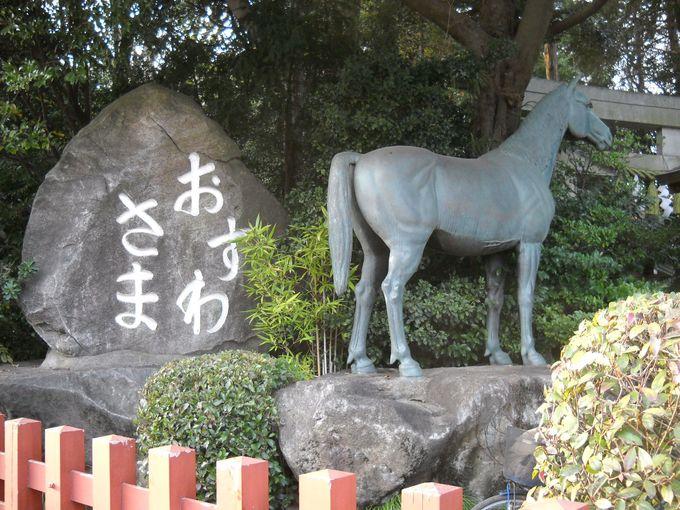 お子様の神様!源義家も祈願した!千葉県流山「諏訪神社」
