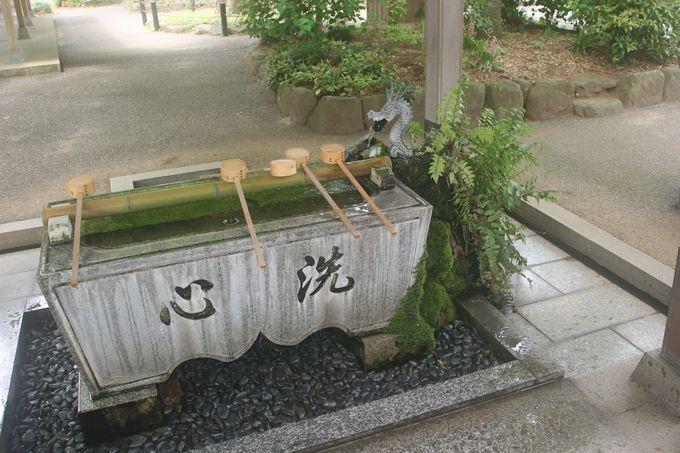 お子様を見守り続けて800年!千葉県柏市「廣幡八幡宮」
