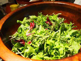 サラダは土づくりから!!ホテルニューオータニの「新・最強の朝食」