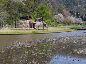山形県高畠町~縄文遺跡と鉄道廃線跡に歴史を刻む「まほろばの里」