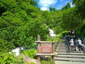 深緑と水しぶき!知床「オシンコシンの滝」4つの癒しポイント|北海道|Travel.jp[たびねす]