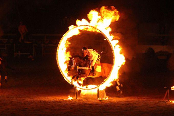 馬と人が作るエンターテイメント!山梨・八ヶ岳ホースショー