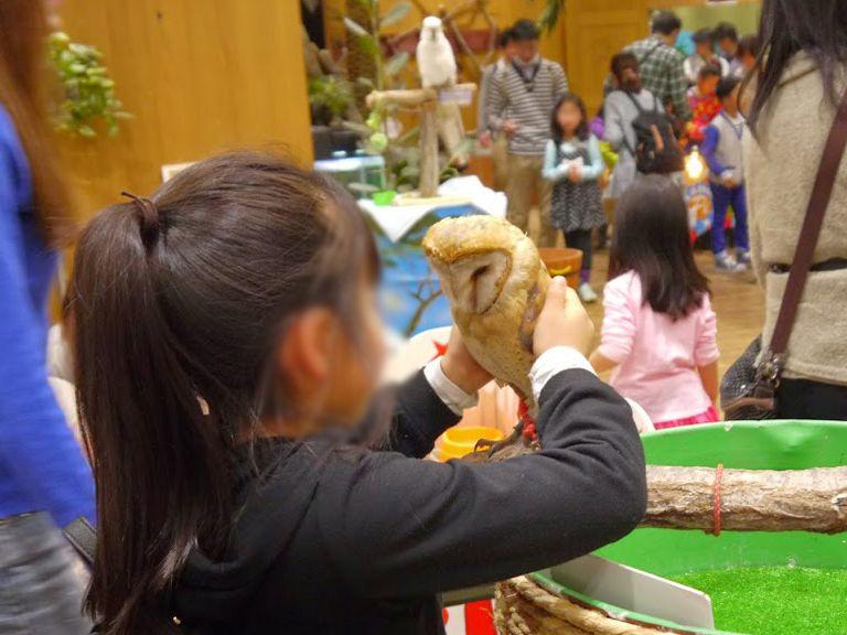 ショッピングモールにライオン?滋賀『めっちゃさわれる動物園』で大興奮!