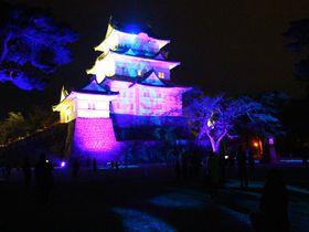 初開催!夜を彩る「小田原城 冬桜イルミネーション」