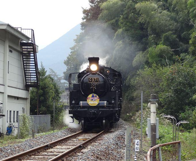 山陰の小京都・津和野散策~知っておきたい、外せないポイント!