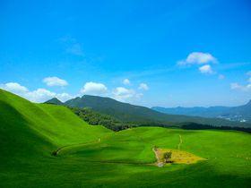 ナウシカの金色の草原!奈良「曽爾高原」の絶景と温泉満喫!