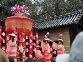 京都山科・随心院で行われる「はねず踊り」は可憐な美しさ!|京都府|[たびねす] by Travel.jp