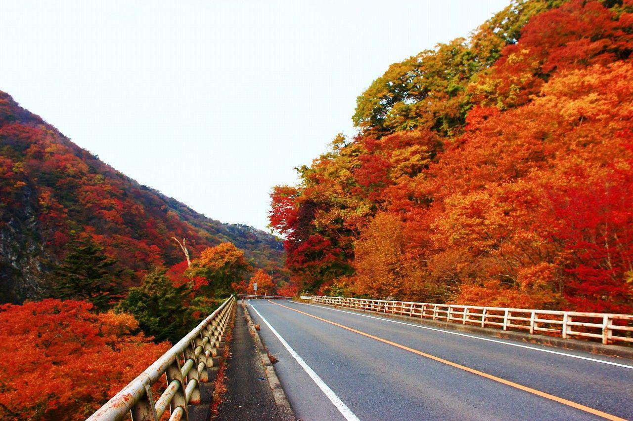 【周辺紅葉スポットのご案内】<br /> <br /> 《塩原箒川渓谷》<br /> <br /> 見頃:10月下旬~11月上旬<br /> <br /> 渓谷の美しさとともに<br /> 紅葉スポットとしてははずせない場所です。<br /> 遊歩道が完備されていて散策しながら<br /> トチノキ・カエデ・イロハモミジなど<br /> 多様な種類の木々の鮮やかな紅葉が楽しめます。<br /> ホテルより車で約15分になります。<br /> <br /> ※年により見頃時期が前後致します。