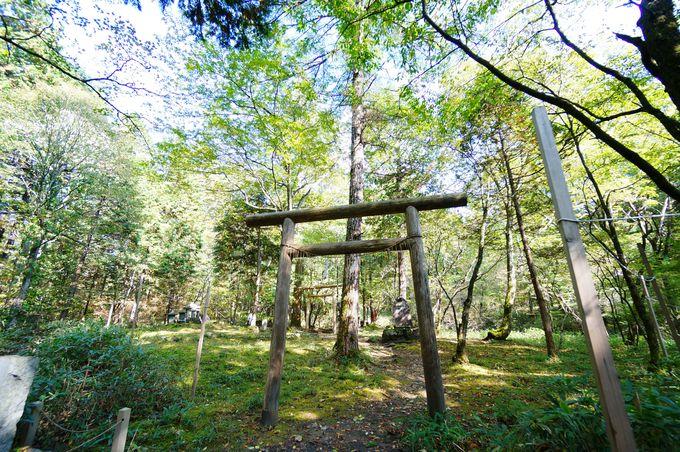 御朱印が凄い!天狗だらけのパワースポット、栃木・古峯神社(ふるみねじんじゃ)