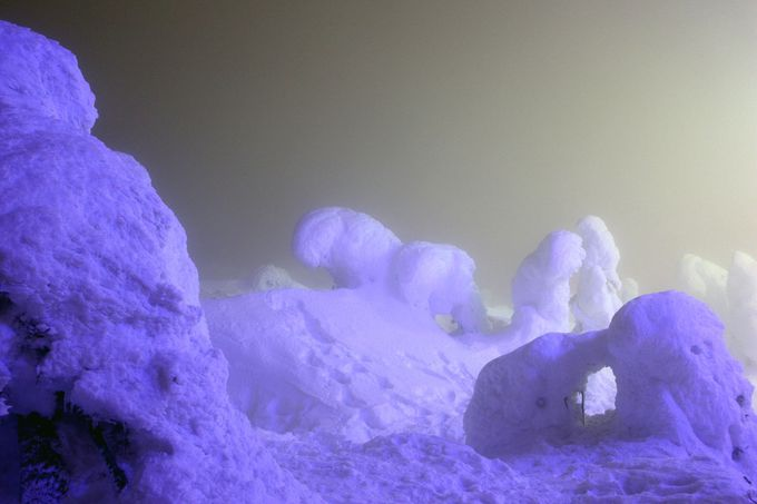 """夜の怪物""""アイスモンスター""""に遭遇!山形蔵王の樹氷がすごい"""