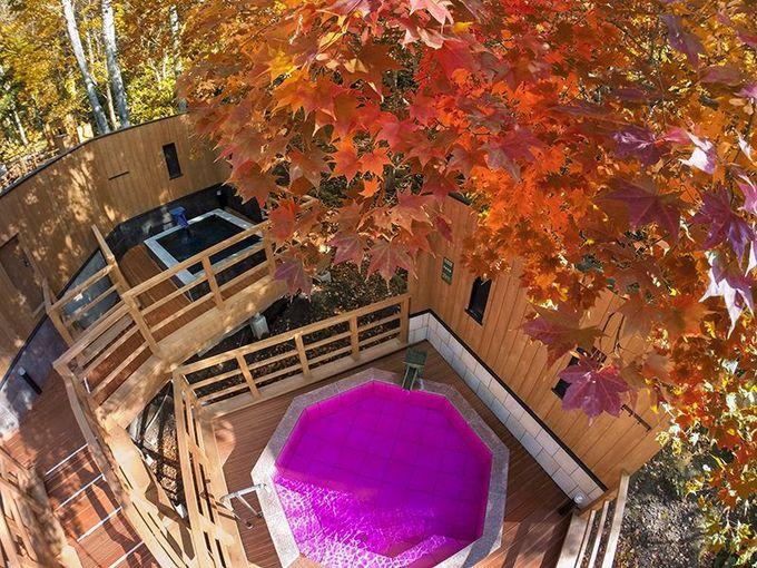 北海道サイズ!!「緑の風リゾート」の雄大露天&森林散歩湯がワクワク×20倍なワケ