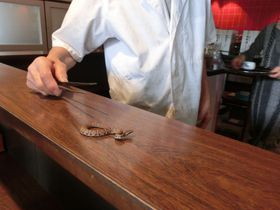 群馬で珍グルメ!ジャパンスネークセンターでマムシ料理を食べよう!|群馬県|[たびねす] by Travel.jp
