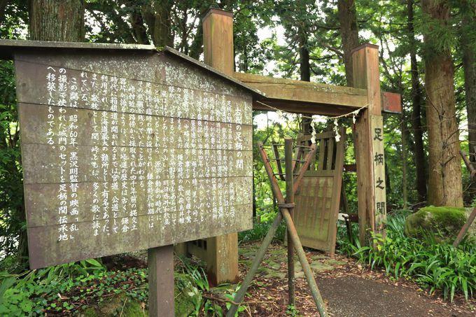 史跡探訪!神奈川・矢倉岳は足柄古道の富士山ハイキング