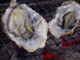 牡蠣 の 収穫 量 ランキング