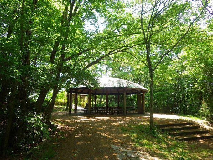 京阪神近郊で無料で遊べる穴場スポット!兵庫・有馬富士公園へ行こう