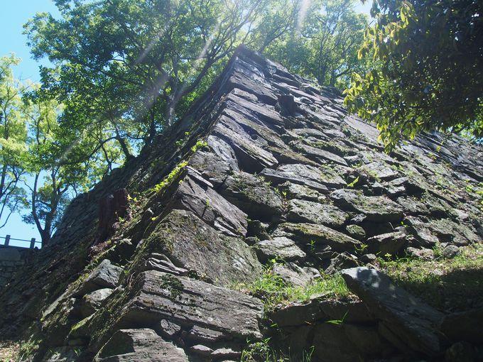 阿波青石で築かれた石垣美しき名城~徳島城~