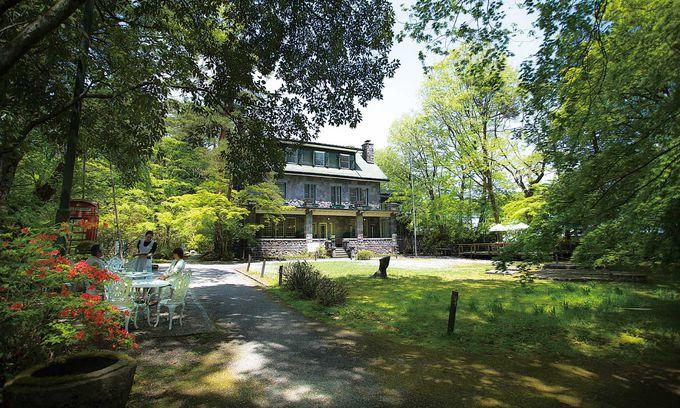日光「西洋料理 明治の館」!緑に囲まれた優美な洋館で極上料理を!