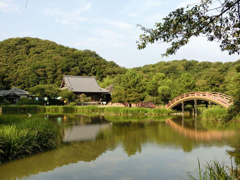 栄華の極み此処にあり。執権北条氏が夢見た極楽浄土の名刹   神奈川県   トラベルjp<たびねす