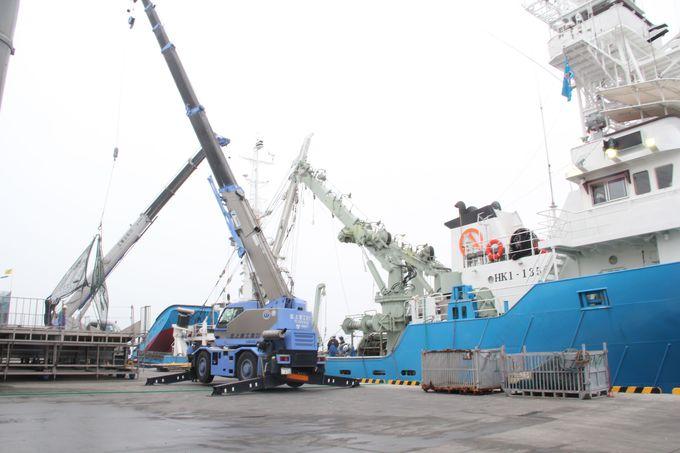 大迫力の船がすごい!石巻漁港で活気あふれる競りを見学
