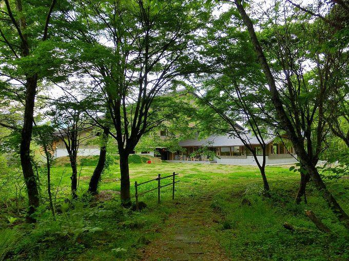 裏磐梯高原 HOTELLI aalto(ホテリアアルト)はプライベート沼付きの極上リゾート!