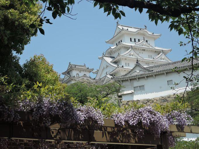 白鷺復活!美しい姫路城の必見「ベストショットポイント」5選