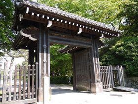 歴史ある京都御苑で、のんびり癒される場所