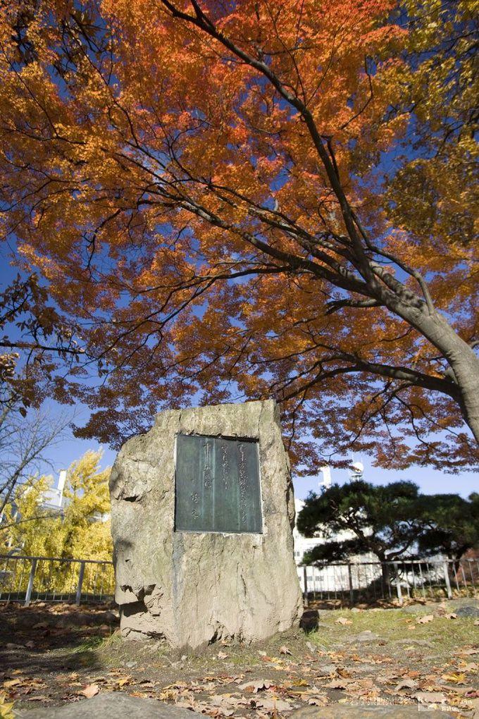 盛岡駅~岩手公園周辺の「石川啄木の歌碑」巡り