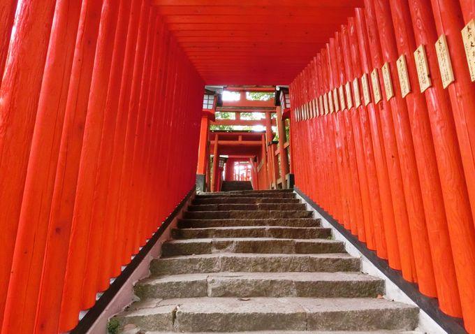 日本五大稲荷の一つ!島根・津和野「太皷谷稲成神社」千本鳥居を抜けて