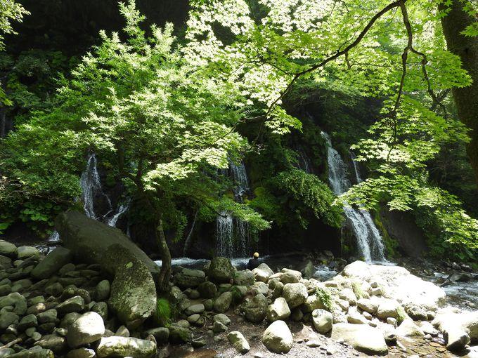 山梨・小淵沢ICから30分、マイナスイオン溢れる吐竜の滝