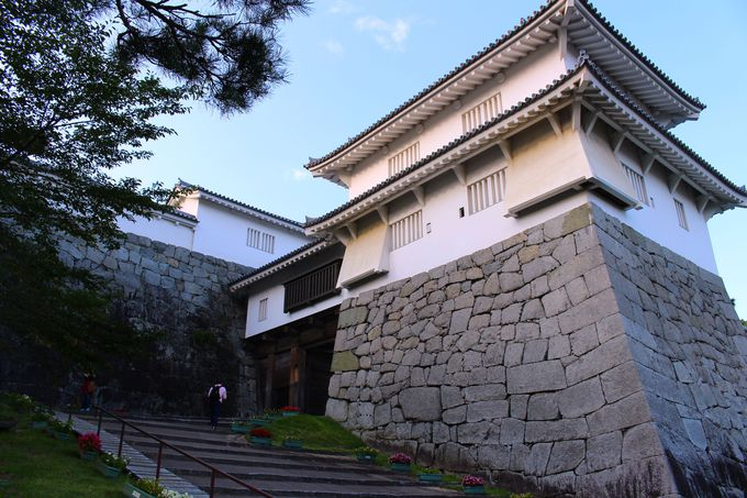 天守閣だけが城じゃない!福島県「二本松城」で学ぶ城の魅力とは?