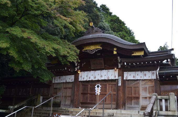 特別なお守りも!埼玉県「高麗神社」の出世・開運実績がすごい!